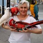 Linda Geigan Profile Picture