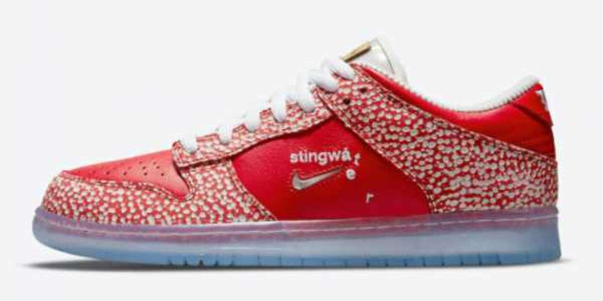 "Stingwater x Nike SB Dunk Low ""Magic Mushroom"" 2021 New Arrival DH7650-600"